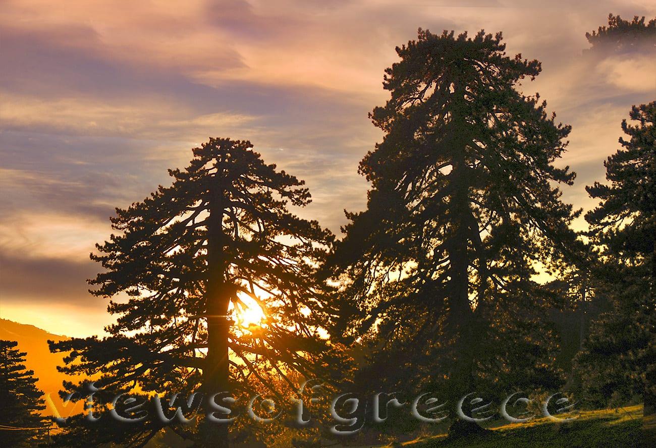 landscape, outdoor, pindus national park, valia calda, wildlife, greece, εθνικο παρκο Βόρειας Πίνδου, grevena, Γρεβενά, Βάλια Κάλντα, Περιβόλι, αρκούδα, πεζοπορία, διαδρομές 4χ4,