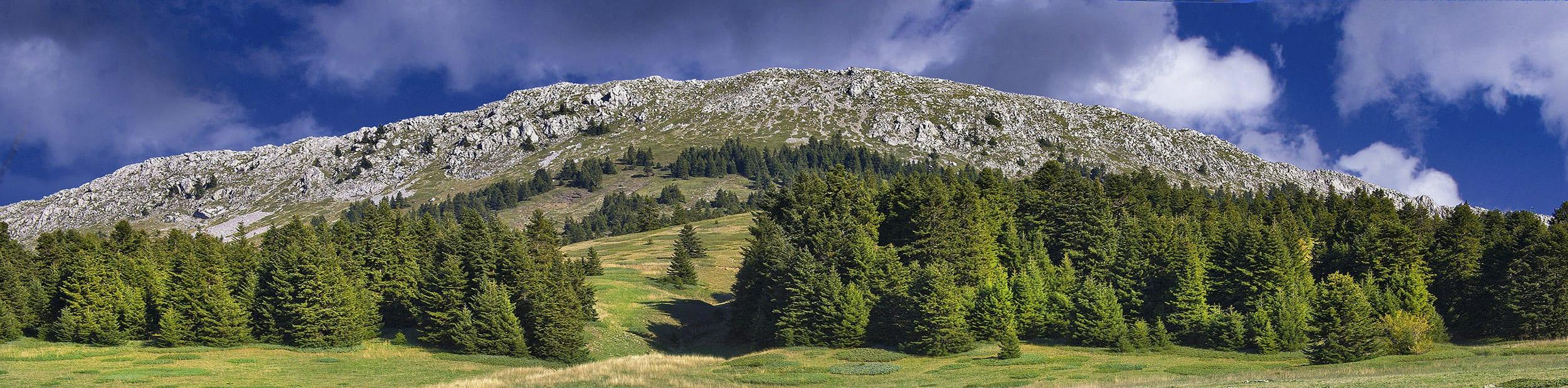 Mt. Oiti, Ypati, river, waterfall, stream, fall, mountain, forest, spring, outdoor, spa, thermal baths, σπα, ιαματικά λουτρά Εθνικό Πάρκο Οίτη, Υπάτη, καταρράκτες, Γοργοπόταμος, τραίνο