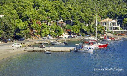 Poros island, pine trees and waves