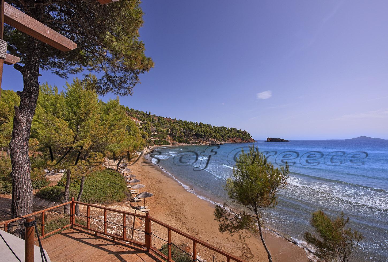 greece, greek, mediterranean, aegean, sporades, water, alonnisos island, beach, Αλόννησος, Σποράδες, φώκια, θαλάσσιο πάρκο, Mom