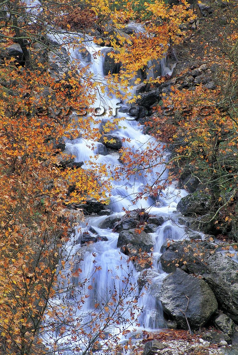 greece, greek, nature, outdoors, river, trikala, thessaly, mountain, tree, traditional, aspropotamos, bridge, landscape, ποταμός Αχελώος, Ασπροπόταμος, Χαλίκι, Φθινόπωρο, Νότια Πίνδος, νομός Τρικάλων, πέτρινα γεφύρια, διαδρομές 4χ4