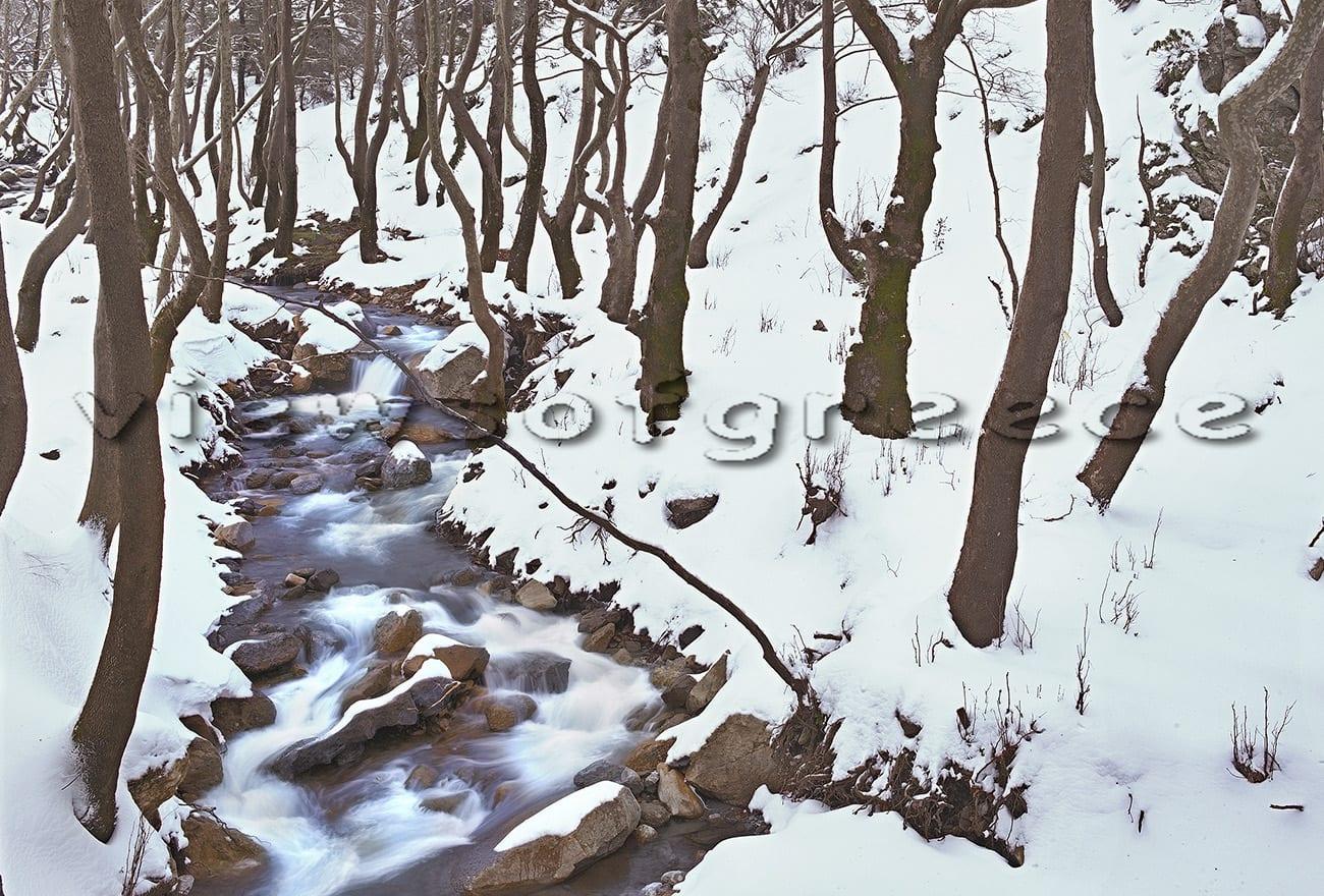 forest, mountain, greece, evia, euboea, hiking, dirfys, dirfy, Ευβοια, Δίρφη, Στενή, καταφύγιο πεζοπορία, χιόνι, διαδρομές 4χ4, αποδράσεις, κοντά στην Αθήνα, Στρόπωνες, καταφύγιο, Ελλάδα, ταξίδια