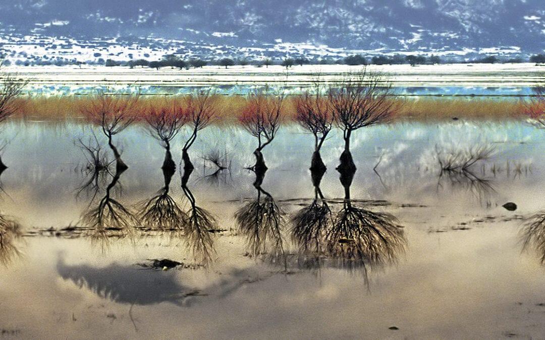 Ορεινή Κορινθία, Στυμφαλία λίμνη, Κεφαλάρι, Λαύκα