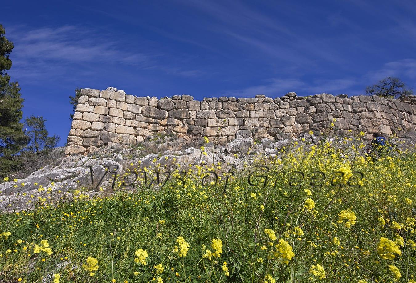 Ancient Nemea, Mycenae, ancient Korinthos, Peloponnese, museum, greece, archaeological, historic, history, archaeology, Αρχαία Νεμέα, Μυκήνες, Αρχαία Κόρινθος, μονοήμερη εκδρομή, Οινοποιεία, Δίας, νομός Κορινθίας, νομός Αργολίδας, Πελοπόννησος, Αρχαιολογικοί χώροι, δρόμοι κρασιού