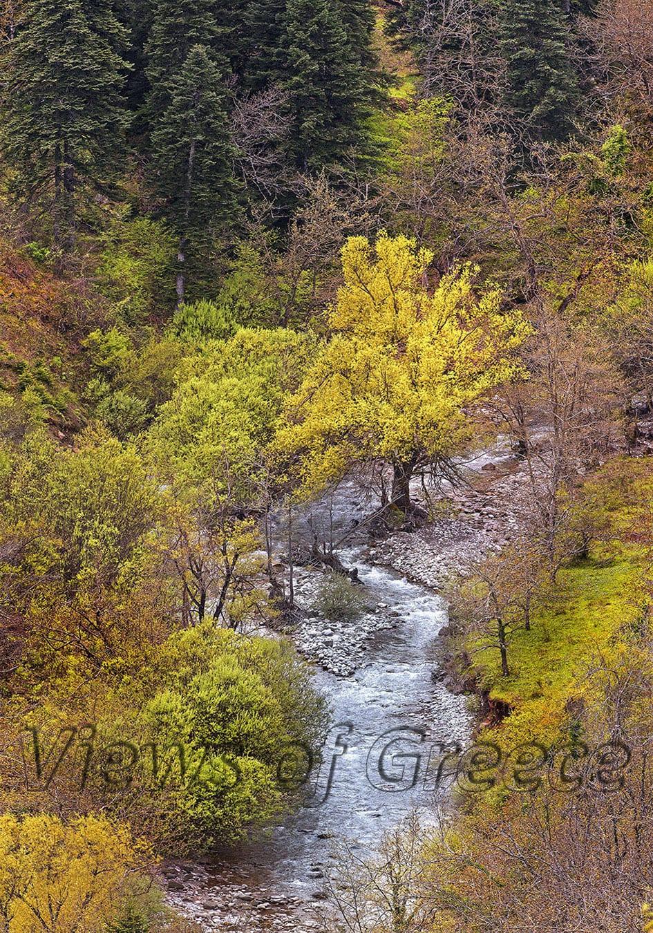 greece, mountain, mountain refuge, nature, greek, agrafa, thessaly, outdoor, ecology, outdoors, wilderness, pindus, adventure, hiking, trekking, altitude, mountains, forest, Άγραφα, Καρδίτσα, Ευρυτανία, πεζοπορία, καταφύγιο, λίμνη Πλαστήρα, Καραμανώλη, εξερευνήσεις, διαδρομές