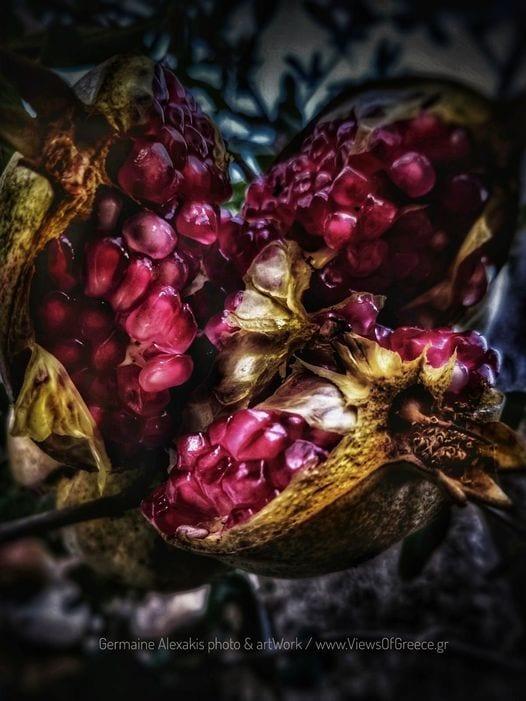 Pomegeanate, greek, flora, trees, mythology, fruits, superfood, red